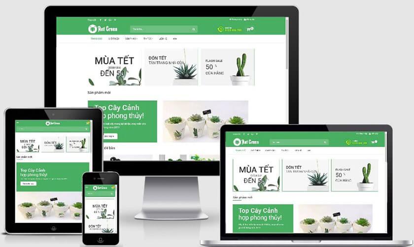 agency thiết kế web